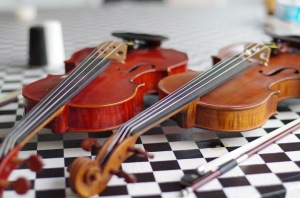 Fiddles on Visitors' Day